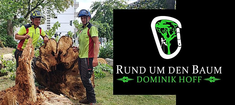 Rund um den Baum Team